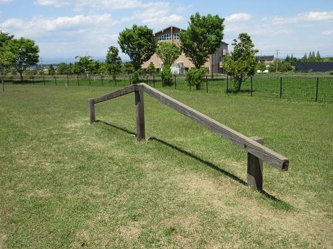 千代田町なかさと公園41