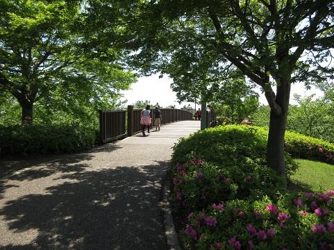 千代田町なかさと公園18